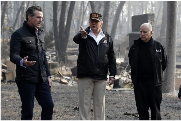 Trump was RIGHT AGAIN: California Will Spend 0M to Thin Forests to Help Prevent Wildfires